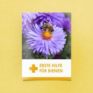 Erste Hilfe für Bienen